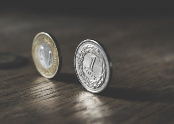 Buying Coins for Your Collection – Fundamentals and Other Factors to Consider