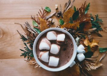 Buying Hot Cocoa Powder Online – Must-Know Tips You Should Apply Before Purchasing